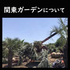 関東ガーデンについて
